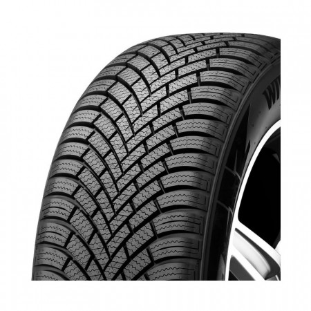 Nexen Winguard Snow G23 WH21